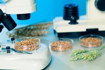 consulenza alimentare - analisi chimico-microbiologiche